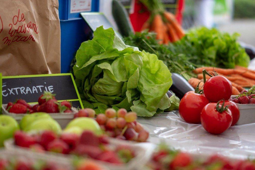 tomates lechugas verduras